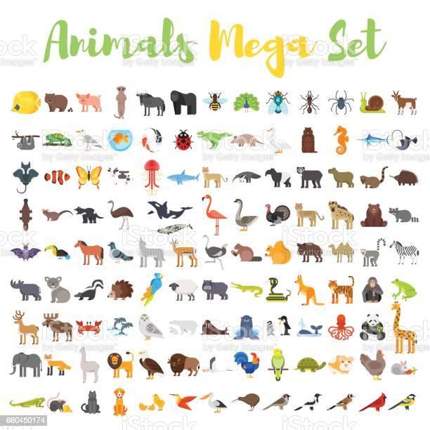 Vector flat style big set of animals vector id660450174?b=1&k=6&m=660450174&s=612x612&h=wivrs8bhtllxuhl4jq yycxtpa2ajkwgkzaxaqbl nw=