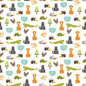 Vector flat style colorful seamless pattern with home pet. Illustration of cat, dog, parrot and others. White background.