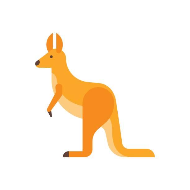 Vector flat style illustration of kangaroo. Vector flat style illustration of kangaroo. Icon for web. Isolated on white background. kangaroo stock illustrations