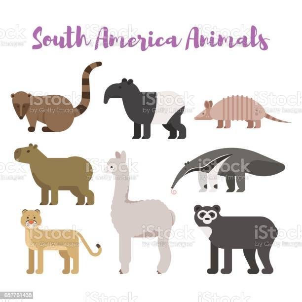 Vector flat style set animals of south america vector id652761438?b=1&k=6&m=652761438&s=612x612&h=m3dtgen i492 ba47zu5n0zsvme9r tsmloivykc2am=
