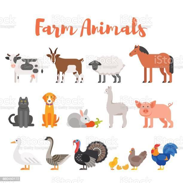 Vector flat style set of farm animals vector id660450172?b=1&k=6&m=660450172&s=612x612&h=kmo8xosidmpvsdl4p1orbqyfqnhwkb7ekmdl72wwysk=
