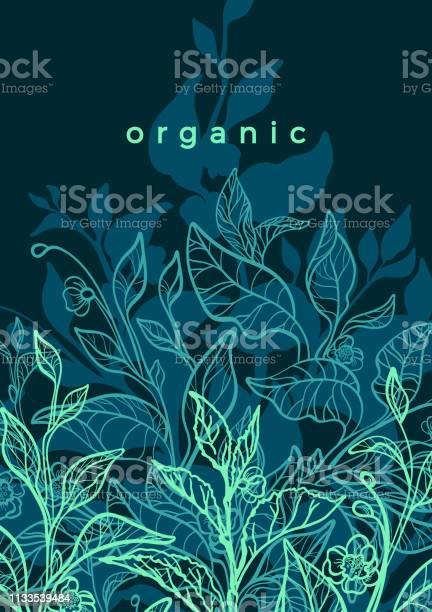 Vector floral background nature tropical harvest green tea vector id1133539484?b=1&k=6&m=1133539484&s=612x612&h=0yq 694ltwnogdmyjkwplvegtsy k6t83cx8bbhe rg=