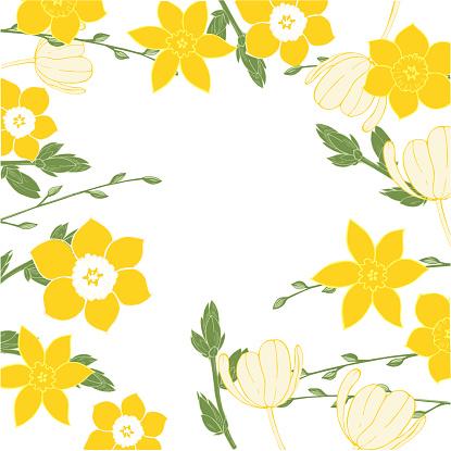 Fondo floral vectorial con flores de primavera.