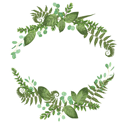 Vector floral bouquet design: set green forest fern, branches boxwood, buxus. Vector watercolor style, herbs, eucalyptus,. Wedding vector for invite card. Designer editable element bundle