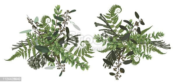Vector floral bouquet design set, green forest leaf, brunia, fern, branches boxwood, buxus, eucalyptus. Watercolor style, herbs. Wedding for invite card Isolated design elements