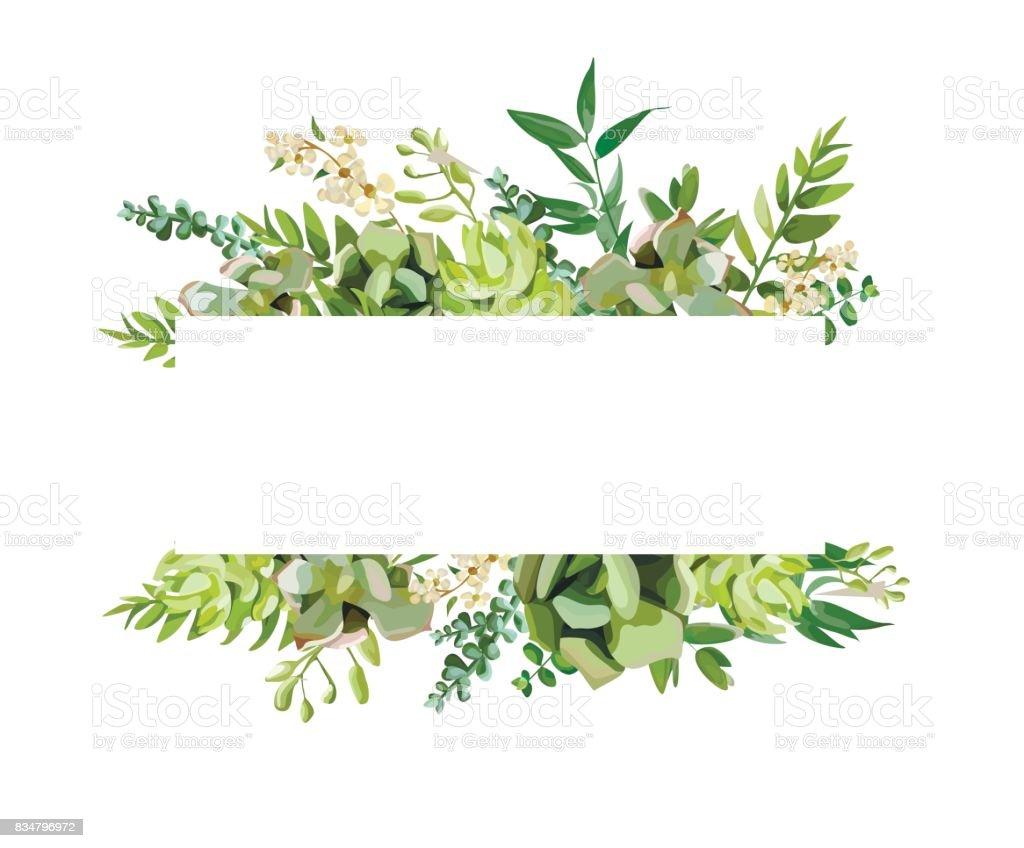 vector floral design horizontal card design soft succulent