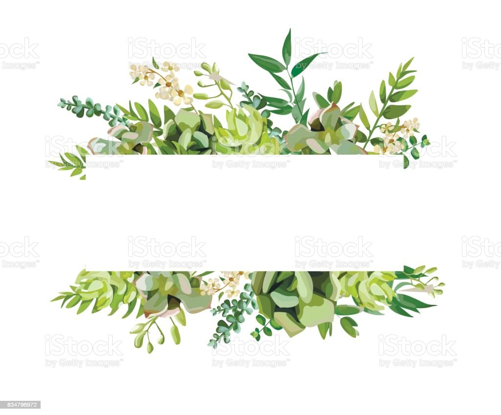Vector floral design horizontal card design. Soft succulent, cactus flower garden eucalyptus green fern seasonal branches leaves mix. Greeting invitation wedding editable. Frame border with copy space