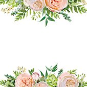Vector floral design square card design. Soft pink peach english garden rose, eucalyptus green fern leaves mix. Greeting delicate wedding invitation, Frame border, poster with copy space for your text