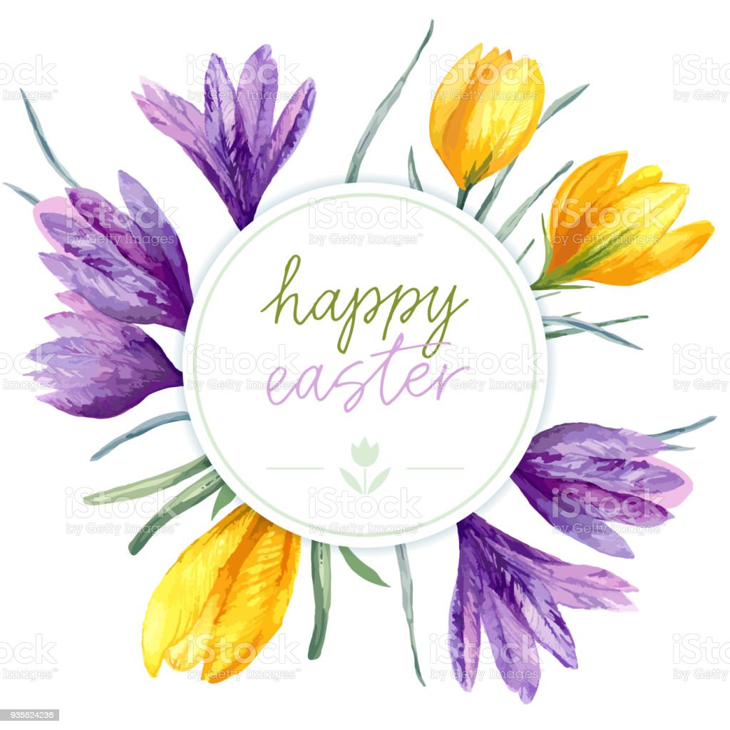 Vector Floral Easter Card With Violet Yellow Crocus Flower On White ...