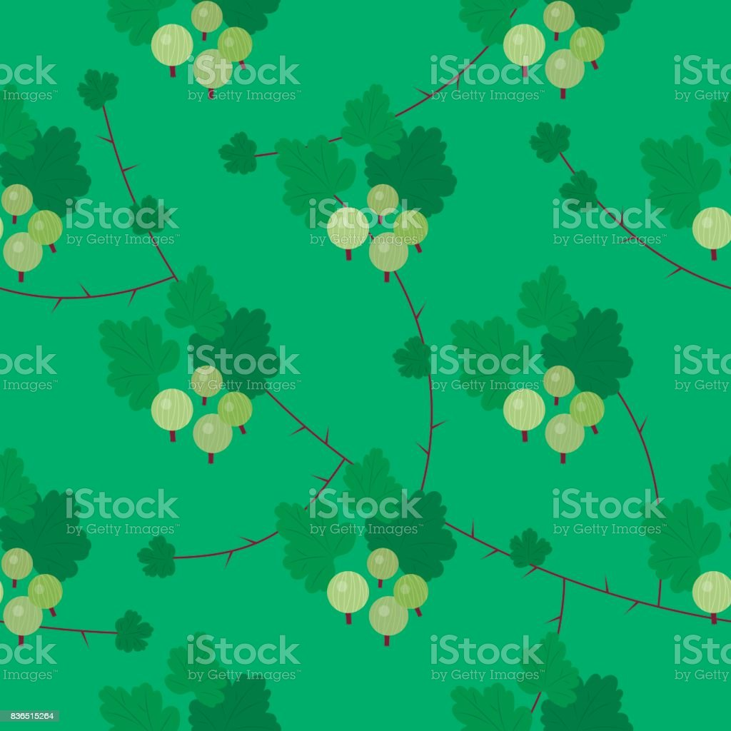 Vector floral gooseberry seamless pattern vector art illustration
