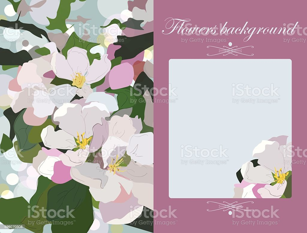 Vector Floral Greeting Card Gift Card Apple Blossoms Background