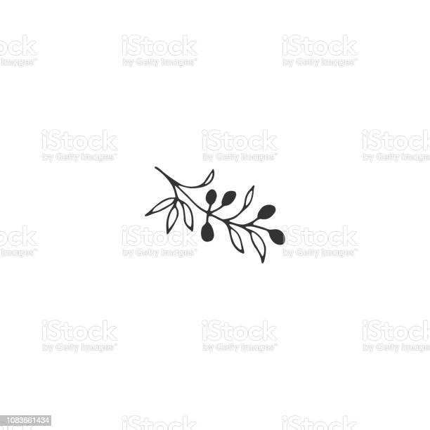 Vector floral hand drawn element in elegant and minimal style vector id1083661434?b=1&k=6&m=1083661434&s=612x612&h=nnh2dm3jp 9d y8qzsljy5ef s1kjaj7ho81ptbetpm=