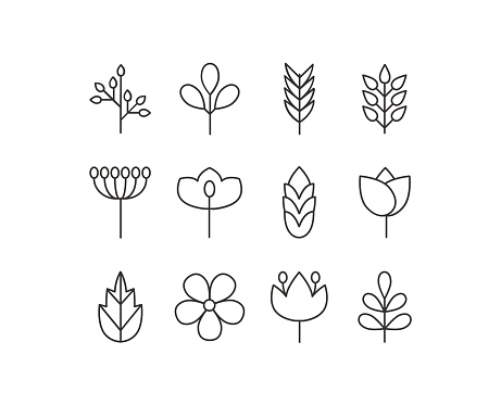 Vector floral icons set
