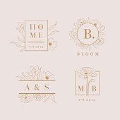 Vector floral logo designs set