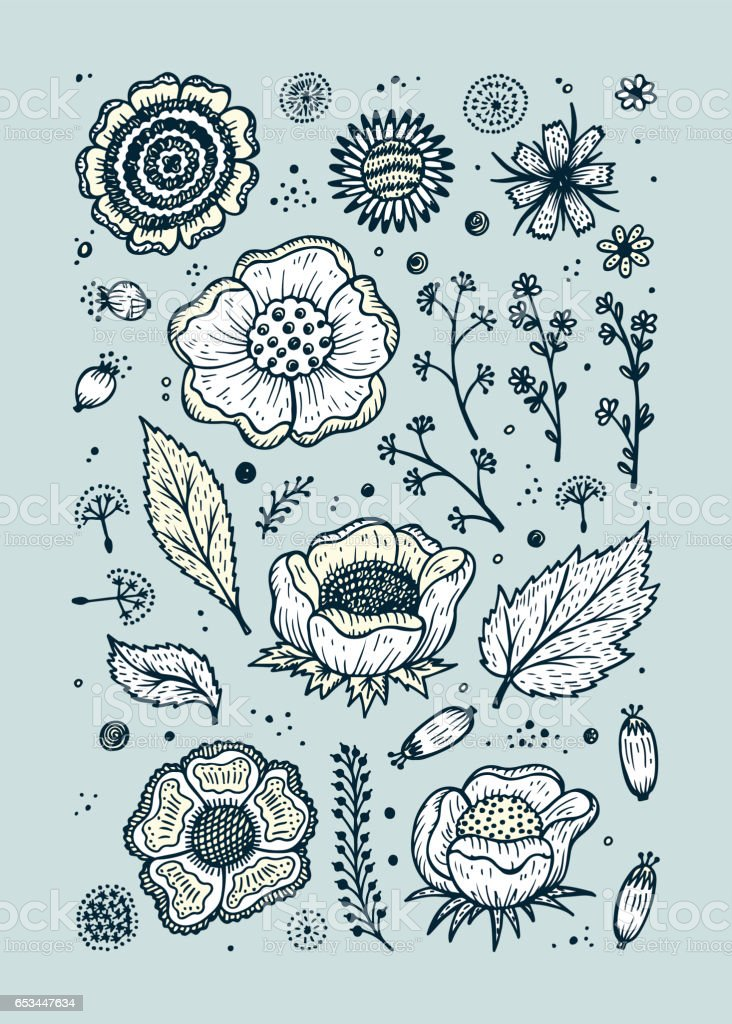 Vector Floral Set. Hand drawn doodle Vintage flowers, leaves, twigs, seeds. Floral flyer or brochure template. vector art illustration