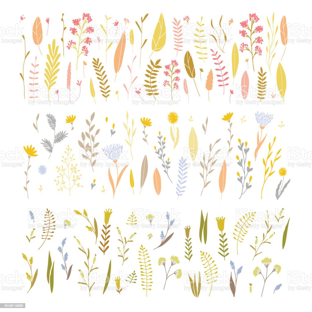 Vector floral set. royalty-free vector floral set stock illustration - download image now