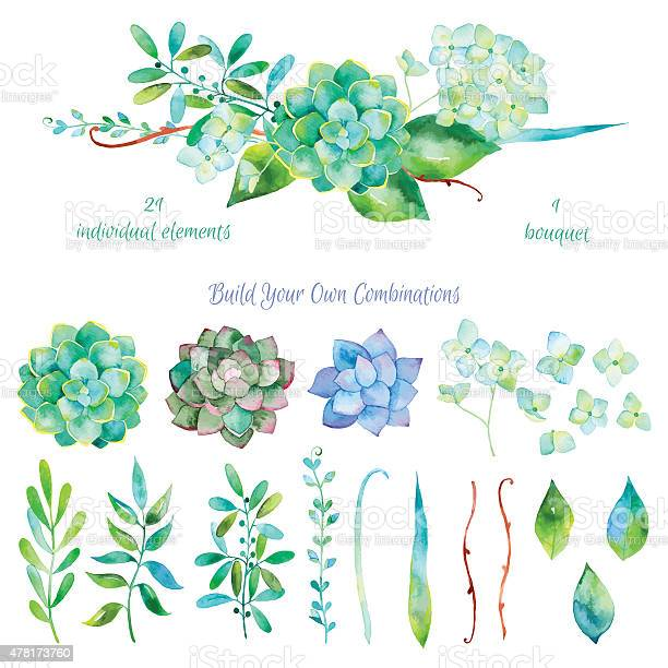 Vector floral setcolorful floral collection with leaves and flowers vector id478173760?b=1&k=6&m=478173760&s=612x612&h=djg21 km0aqzlfnkdelmkud1n9mj jhzm21gt5mhigm=