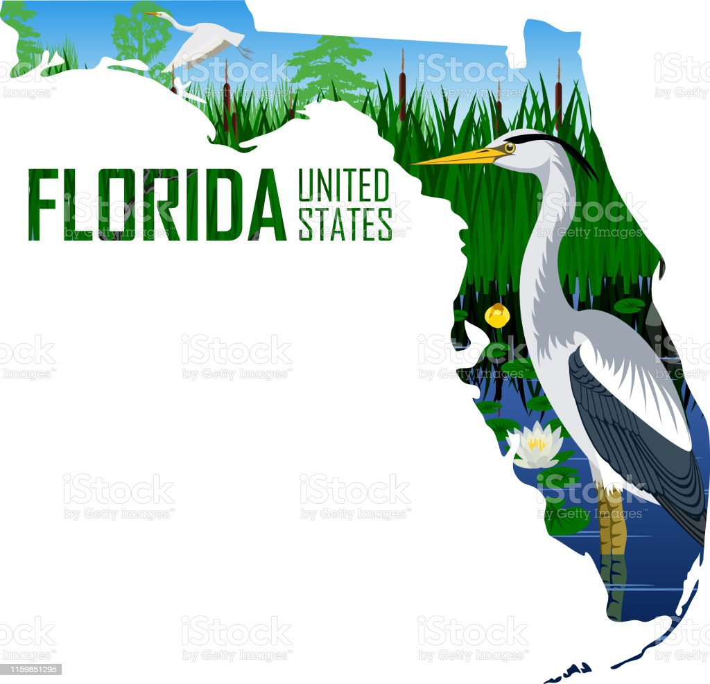 Vector Florida American State Map With Great Blue Heron In ... on wetlands in florida on map, appalachian mountains on world map, wetlands on world map,