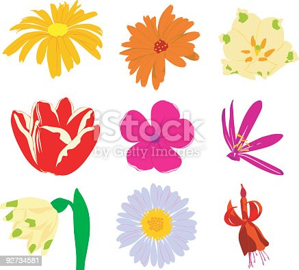 Vector real colorful flowers: violet, tulip, snowdrop, petunia, bell flower. Zip contains: .eps, .ai, .jpg, .svg