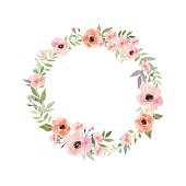 Vector flowers frame. Elegant floral collection with isolated flowers.