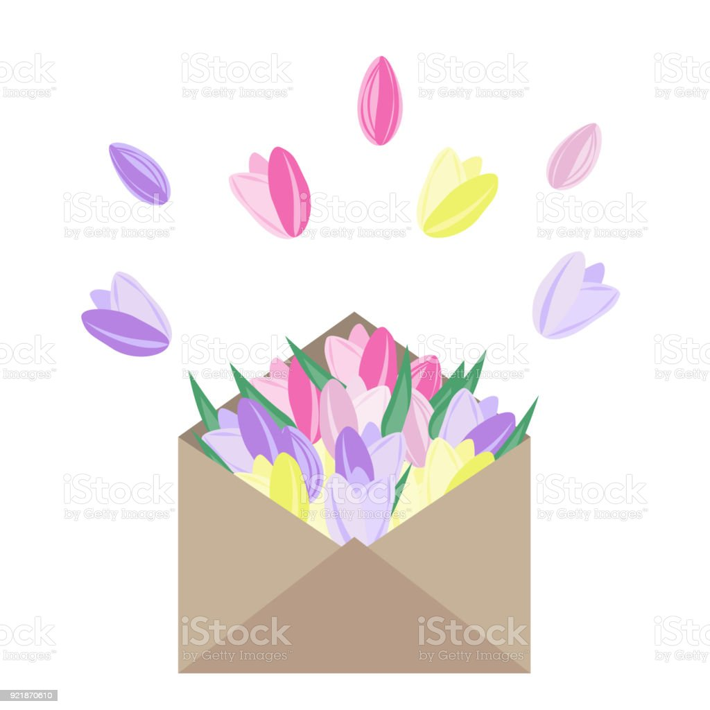 Vector Flowers In Envelope Pink Yellow And Purple Tulips In Paper