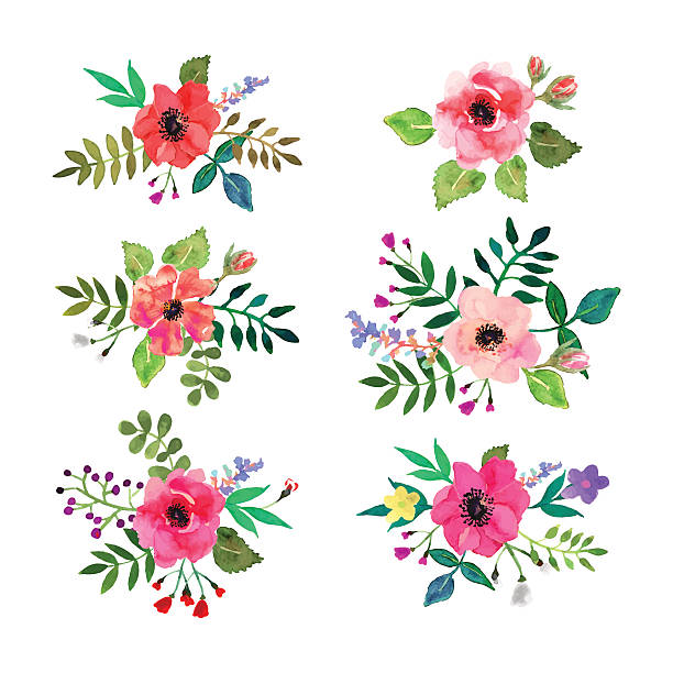 Vector flowers set. Floral collection with watercolor leaves and flowers.​​vectorkunst illustratie