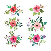 Vector flowers set. Floral collection with watercolor leaves and flowers.