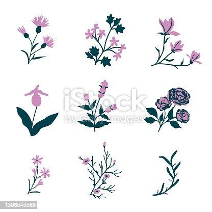 istock Vector flowers set 1306545588