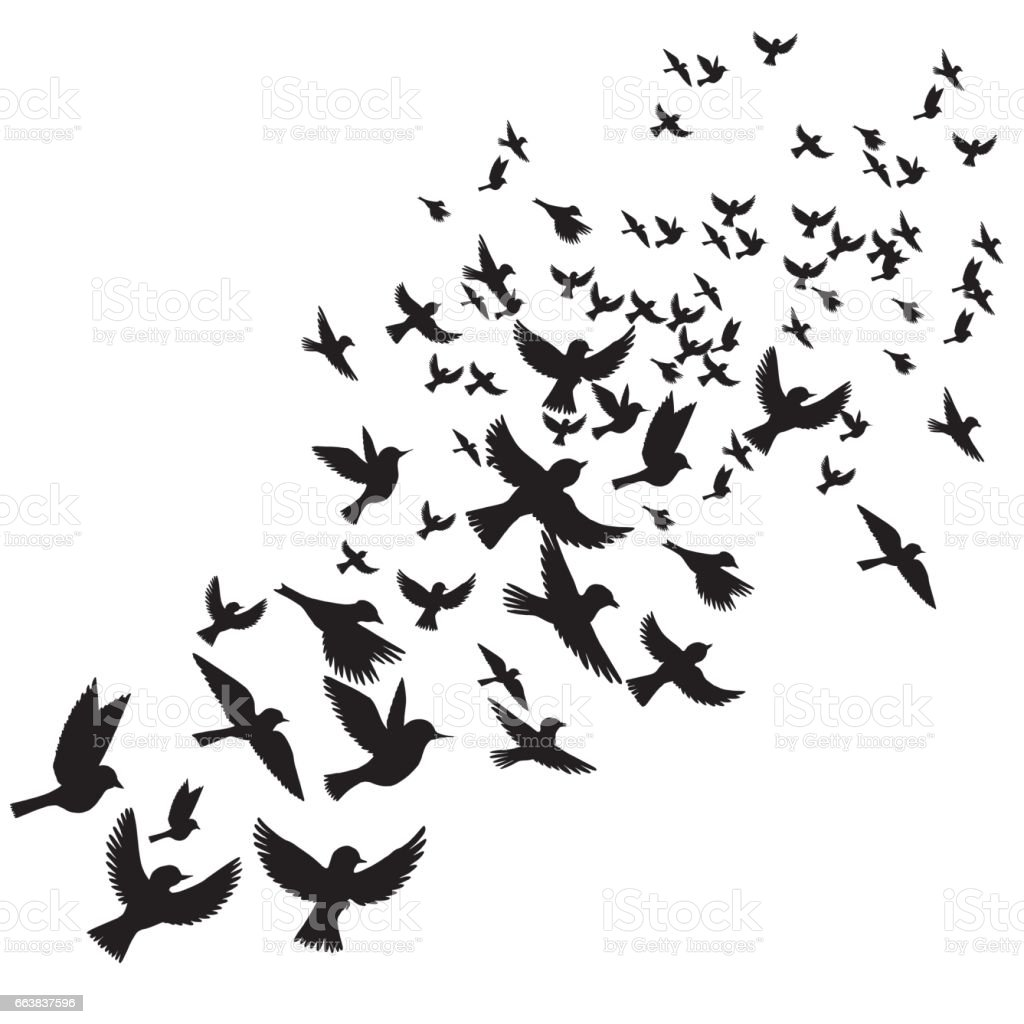 vector flying birds silhouettes stock vector art 663837596 istock