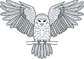 Vector illustration of a flying owl with a stick in its paws.