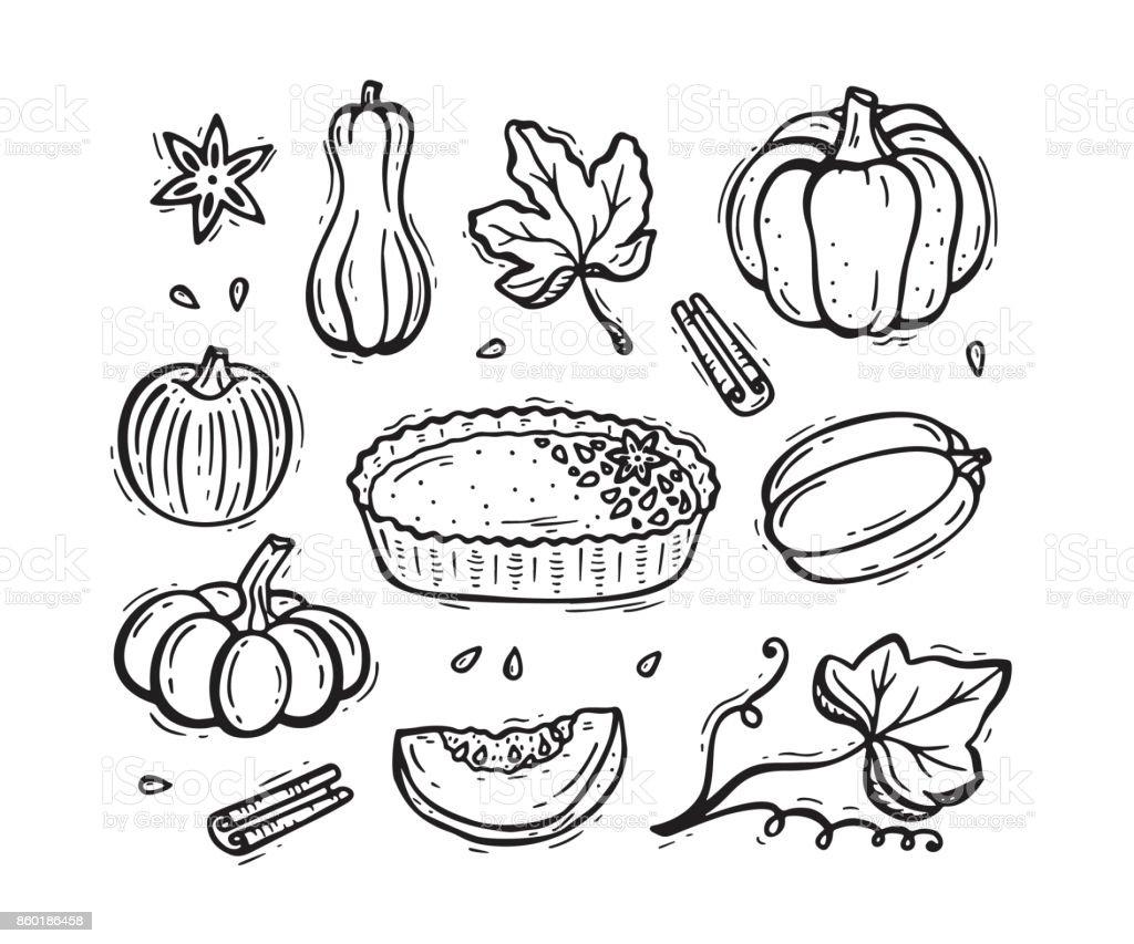 Vector Food Autumn Harvest Symbols Hand Drawn Doodle Pumpkin Pie