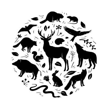 Vector forest animals collection in circle frame. Flat animals silhouettes in black color. Design for t-shirt print, cover, poster, banner, card. Black silhouettes animals