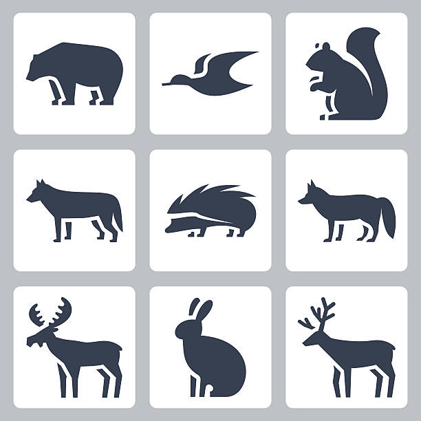 Vector forest animals icons set vector art illustration