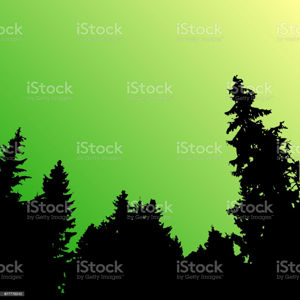 outdoor woods backgrounds. Unique Backgrounds Vector Forest Landscape Silhouette Realistic Trees Woods Silhouettes In  Night And Evening Sky And Outdoor Woods Backgrounds T