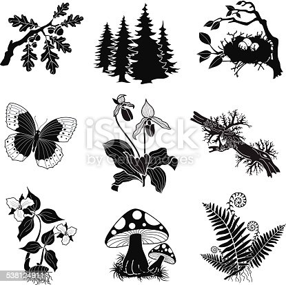 A vector illustration of a forest wildlife illustration set in black and white. An EPS file and a large jpg are included in this download.
