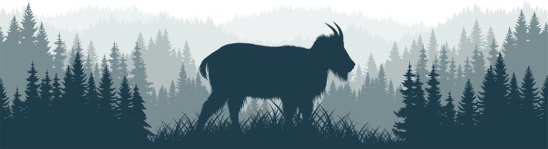 vector  forest woodland background texture seamless pattern with Rocky Mountains goat