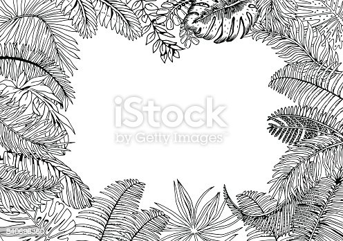 istock Seamless Pattern with Tropical Plants 645741150 istock ...