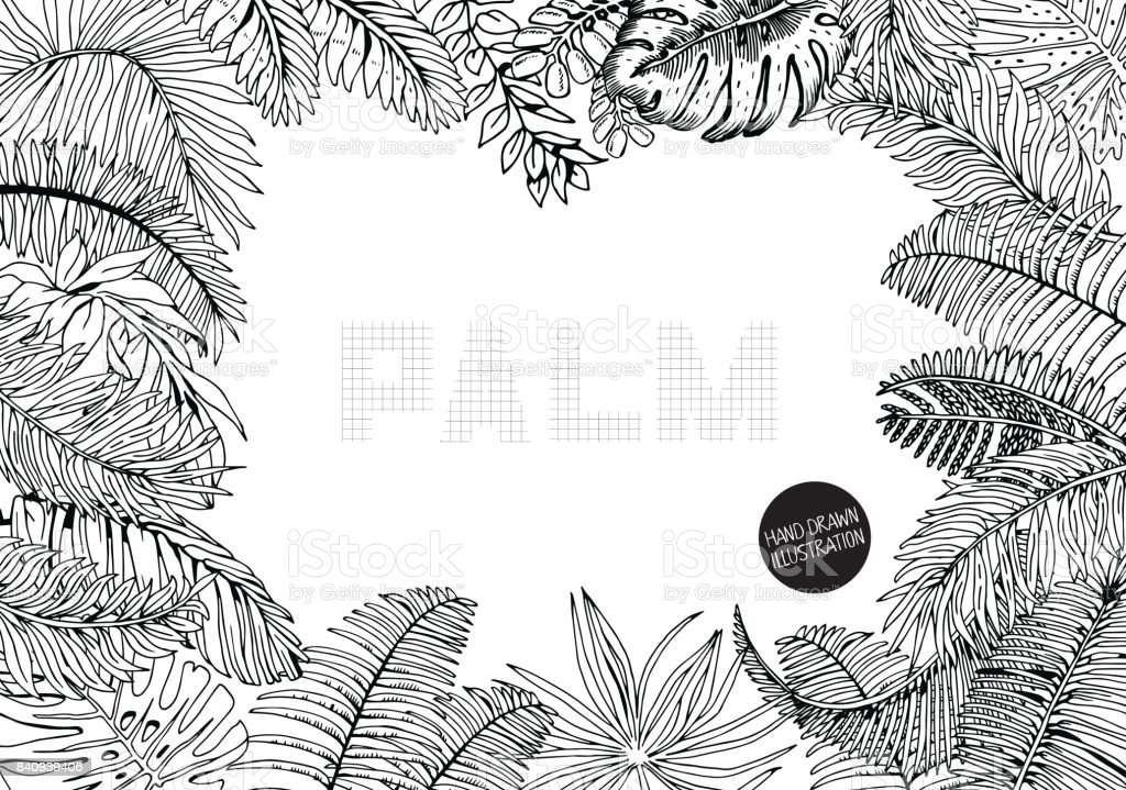 Vector Frame With Exotic Palm Leaves Hand Drawn Recipe Or Menu ...