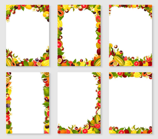 Vector frames set of exotic fresh fruits Frames of exotic and garden fruits harvest of fresh papaya, figs or grapefruit and orange, mango, avocado and tropical pineapple or lichee and mangosteen, maracuya passion fruit. Vector templates set banana borders stock illustrations