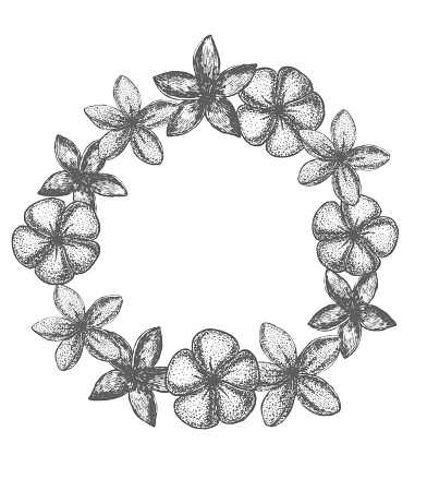 vector frangipani garland