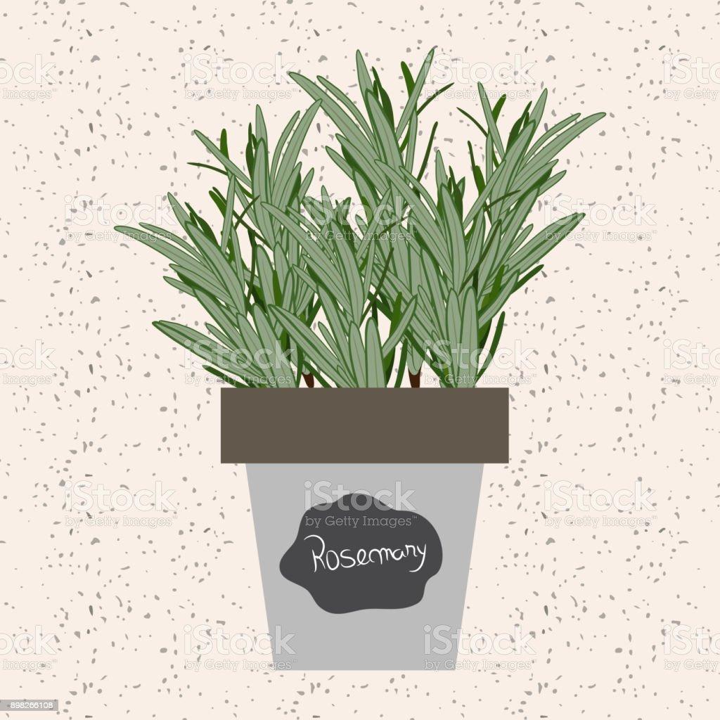 aromates en pot excellent comment planter des plantes aromatiques en pot with aromates en pot. Black Bedroom Furniture Sets. Home Design Ideas