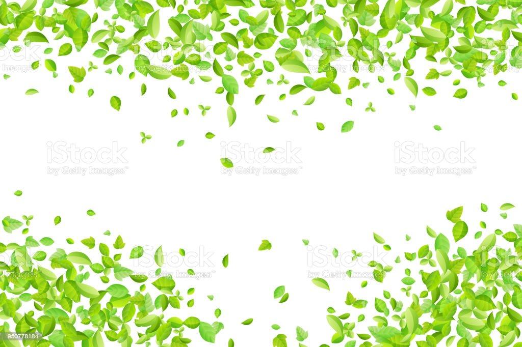 Ilustración de Hojas De Color Verde Manantial Vector Fondo Para ...