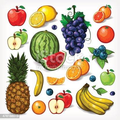 Vector Fruit Complete Set