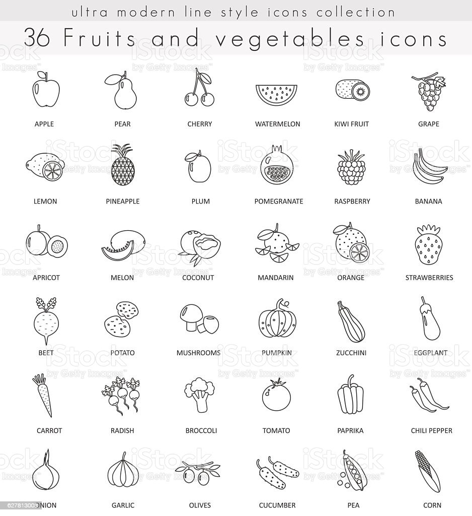 vector fruits and vegetables ultra modern outline line icons for royalty free stock vector art