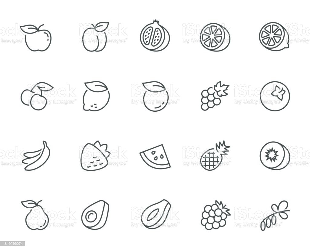 Vector fruits icon set in thin line style vector art illustration