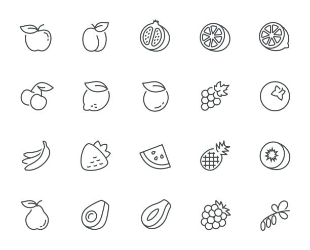 vector fruits icon set in thin line style - fruit icon stock illustrations, clip art, cartoons, & icons