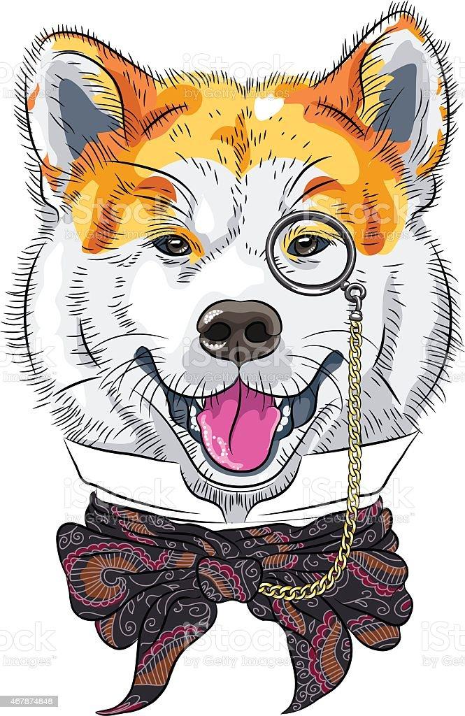 Ilustracja wektorowa Śmieszne kreskówka, stylowe, hipsterskie majtki psów Akita Inu – artystyczna grafika wektorowa