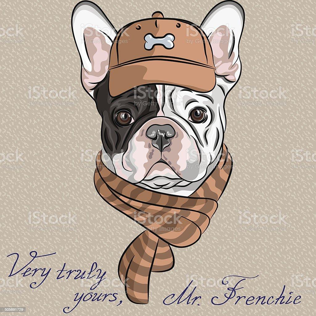 Bouledogue dessin anim pg91 jornalagora - Bulldog dessin anime ...