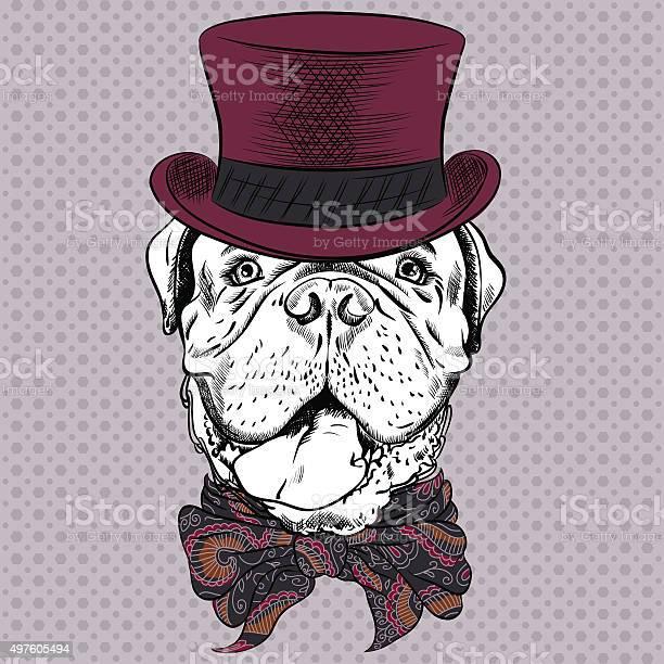 Vector funny cartoon hipster dog french mastiff vector id497605494?b=1&k=6&m=497605494&s=612x612&h=xmzchyzgiohahspi0jeix9niveljaxmyhhb9bo0wz8o=