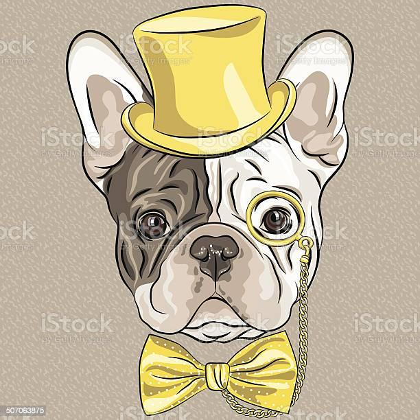 Vector funny cartoon hipster french bulldog dog vector id507063875?b=1&k=6&m=507063875&s=612x612&h=yphl6zimbfxpa1ynyr n wlp vrv1znvrwl7suub4ho=